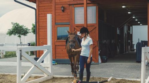 Kentucky Performance Products: Keeping Dogs Safe Around Horses and Livestock