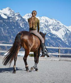 Six Reasons Why Horseback Riding is Considered Amazing Exercise