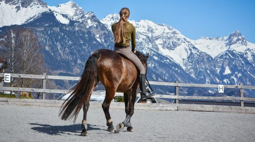 Six Reasons Why Horseback Riding is Considered Amazing Exercise