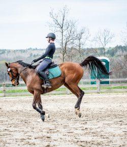 When It Isn't Easy: Aubrey & Boomer