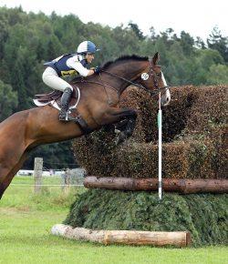 """Anxiety on Horseback: """"Hypno"""" It Gone"""