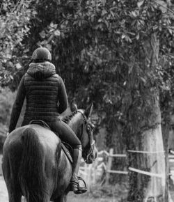 Five Mental Wellness Tips for Equestrians