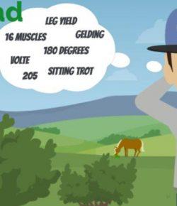Ponydad: Horse Anatomy for Dummies