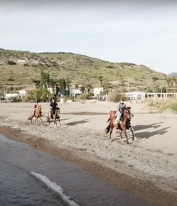 Ecovet Presents Mind Your Melon: Riding in Greece