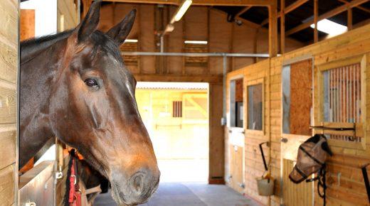 SmartPak Monday Morning Feed: Boarding Barn Questionnaire
