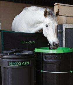Introducing Haygain's Forager: Bringing Nature's Genius to Horse Management