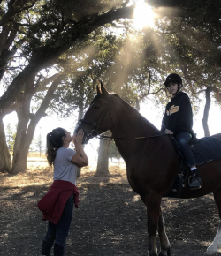 Standing Ovation: Radical Inclusivity at B.O.K. Ranch