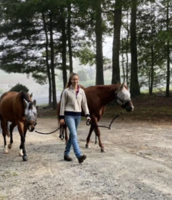Best of JN: An Open Letter to Lesson Horses