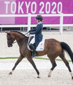 Meet the One-Eyed Horse Competing in the Olympics