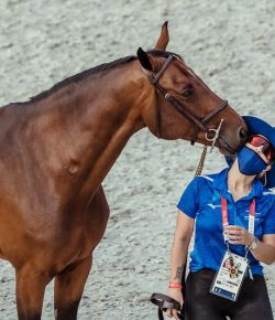 Today in Tokyo: Stage Set for Olympic Team Jumping Battle