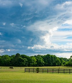 Summer Storms Are Here! Q&A With Connaway & Associates