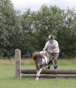 Ecovet Presents Mind Your Melon: Skatejoring with Pontus Hugosson