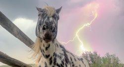 Reader Photo Challenge: Stormy Skies