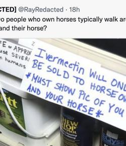 The Tweet That Broke the (Horse) Internet