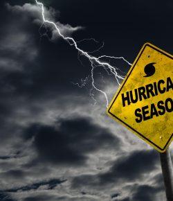 Hurricane Preparedness and Horse Ownership
