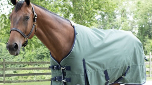 SmartPak Labor Day Morning Feed: Labor Day Sale Starts Now!