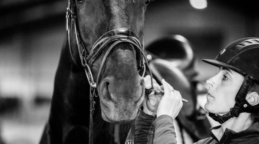 How We Can Aim To Meet Our Horses the Same Way, Every Day
