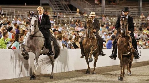 Tennessee Walking Horse National Celebration Allows Convicted Horse Abuser Jackie McConnell to Return While Reform Efforts Continue to Fail