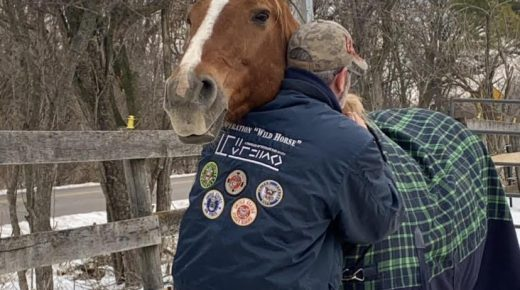 Standing Ovation: Operation Wild Horse