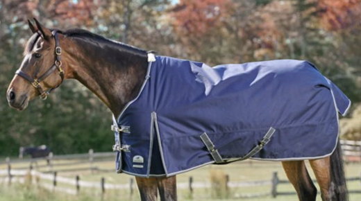 SmartPak Monday Morning Feed: Ultimate Blanketing Guide