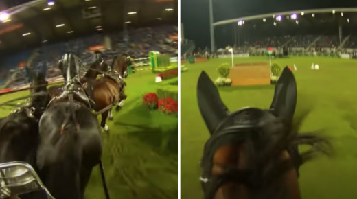 Mind Your Melon: Go For a Wild Ride in the Aachen Jump and Drive