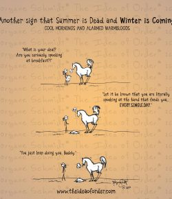The Idea of Order: Summer is Dying…