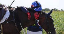 Reader Photo Challenge: Rewarding Your Horse