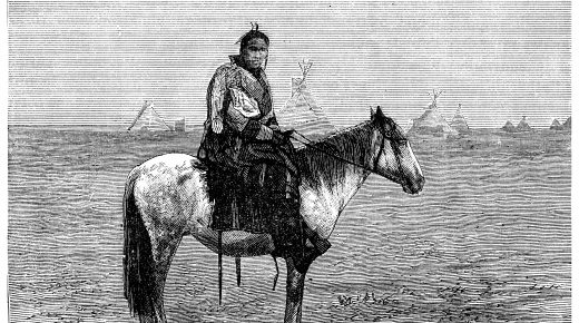 The Role of the Horse in Native American Culture