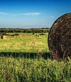 Feeding Round Bales, Presented by Kentucky Performance Products
